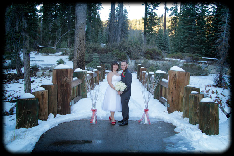 winter wedding in sequoia